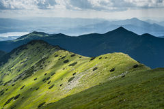 Mountain ridge in summer Royalty Free Stock Image