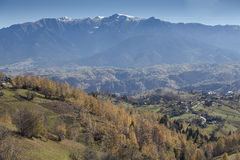 Mountain ridge. Village located in a valley between Piatra Craiului and Bucegi mountains Stock Photography