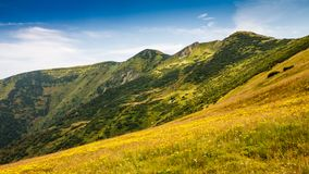 Mountain ridges in the Vratna valley. Royalty Free Stock Images
