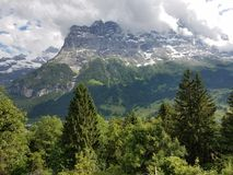 Mountain rising above the trees Royalty Free Stock Photography