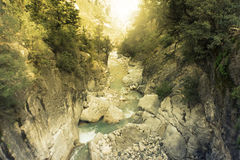 Mountain rive. Stock Photography