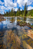 Mountain river Royalty Free Stock Image