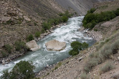 The mountain river Stock Images