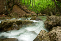 Mountain river. Streamy mountain river in a deep forest Stock Photo