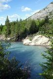 Mountain River. A river in the rocky mountains of alberta canada Royalty Free Stock Photos