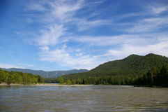 Mountain river. Katun, Altai, Siberia Royalty Free Stock Image
