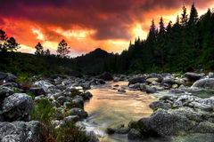 Mountain River. Beautiful view of a mountain river at sunset stock image