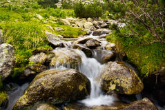 Mountain river 2. Bulgarian nature background; mountain river Stock Images