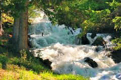 The mountain river Royalty Free Stock Photography