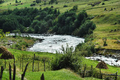 The mountain river. Flowes down a green valley stock photography