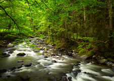 Mountain River Stock Image