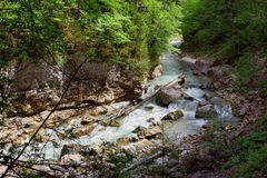 Mountain river Royalty Free Stock Photo