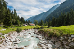 The mountain river. In Genova valley Natural Park Adamello Brenta, Italy Royalty Free Stock Image
