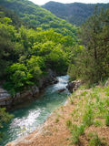 Mountain river Royalty Free Stock Photography