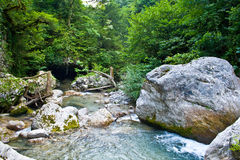 Mountain river. In Republic Abkhazia Stock Images