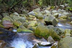 Mountain River. River in Karpacz region in Karkonosze Mountains (Poland Stock Photography