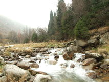 Mountain river. Autumn mountain river in Ala-tau, Kazakhstan stock photos