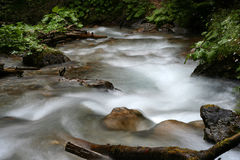 Mountain river. Small mountain river - long exposure Royalty Free Stock Images