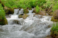 Mountain river. In the forest Stock Photo