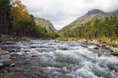 The mountain river. Autumn. A mountain valley. The mountain river Royalty Free Stock Image