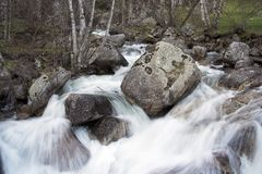 Mountain river. In the forest Royalty Free Stock Images