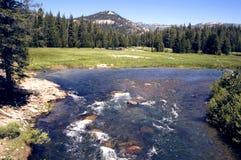 Mountain River. River Runs Through Mountains and Meadow Royalty Free Stock Photo