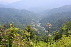 Mountain river in Abkhazia. The bed of a mountain river high in the mountains of Abkhazia royalty free stock photos