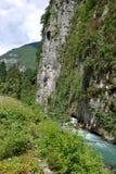 Mountain river in Abkhazia Royalty Free Stock Image