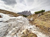 The mountain river against the sharp mountains in Dolomites. royalty free stock photography