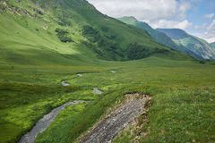 Mountain river among the alpine fields royalty free stock photos