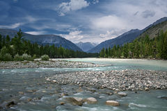 Mountain river in Altay Stock Photos