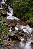 Mountain river in the Andes Stock Photography