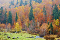 Mountain river in autumn Stock Photo