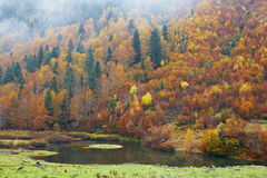 Mountain river in autumn Royalty Free Stock Photo