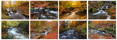 Mountain river in autumn Stock Photography