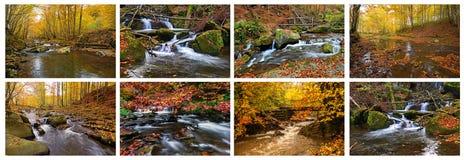 Mountain river in autumn Royalty Free Stock Photos