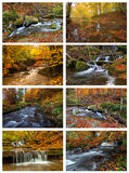 Mountain river in autumn Royalty Free Stock Image