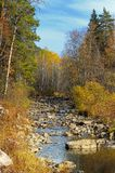 Mountain river in autumn forest Stock Photography