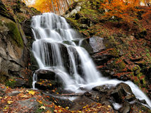 Mountain river in the autumn forest Royalty Free Stock Image