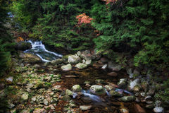 Mountain River in Autumn Forest Royalty Free Stock Images