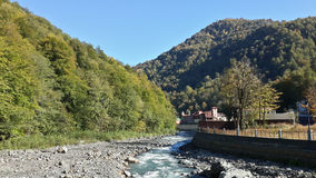The mountain river and autumn forest, nature of Russia, Krasnaya Polyana. The mountain resort Rosa Khutor, the river and the forest in early autumn, nature of Stock Photography