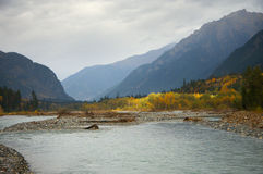 Mountain river at autumn Royalty Free Stock Images