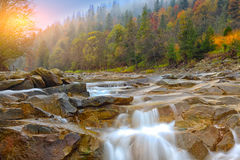 Mountain river in autumn at sunrise. Rocky shore. Multi-colour wood Royalty Free Stock Images