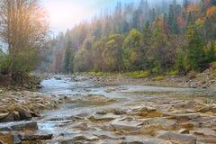 Mountain river in autumn at sunrise. Rocky shore. Multi-colour wood Stock Image