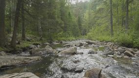 Mountain river in autumn time. Rocky shore. River flowing through Rocky Mountains.  stock video footage