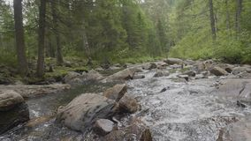 Mountain river in autumn time. Rocky shore. River flowing through Rocky Mountains.  stock footage
