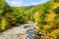 Mountain River in Autumn under Blue Sky Royalty Free Stock Photography