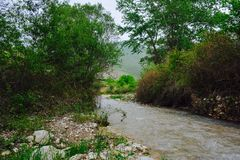 Mountain river, Azerbaijan, Shabran region Royalty Free Stock Image