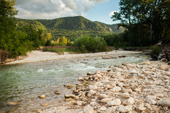 Mountain river on the backdrop of the forest Stock Image