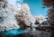Mountain river bank with trees. Infrared (IR) landscape Stock Image